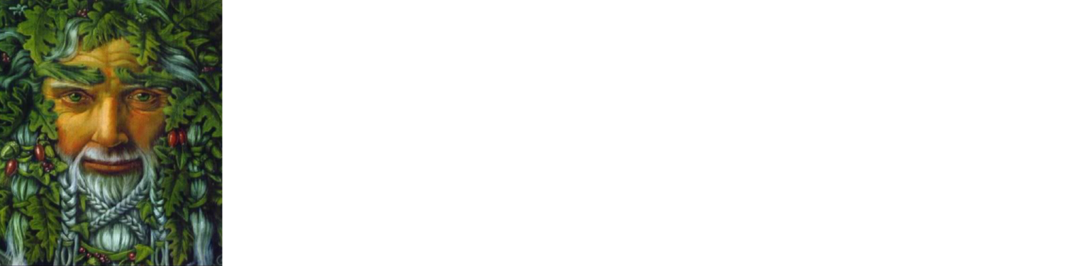 The Green Man Little Braxted
